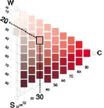 ncs-triangulo-del-color